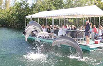Bottomless Boat Ride & Nature Tour